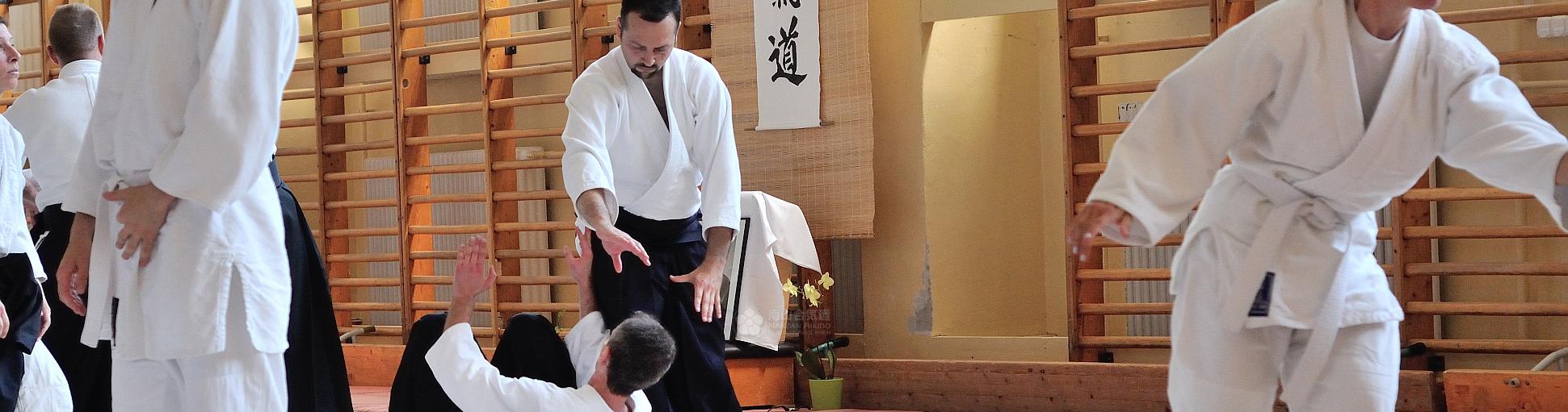 Köszöntünk honlapunkon!  Niklai Norbert 5. dan (Aikikai, Tokió) vezetésével, 2003-óta szervezünk Aikido edzéseket Pécsett gyermek és felnőtt csoportoknak.  Bővebb információért kattints a lenti képekre, vagy válassz a menüpontok közül fent!