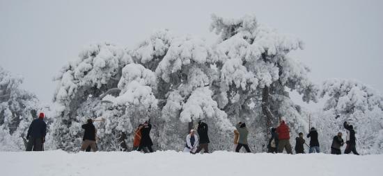 Nanzan Aikido Pécs
